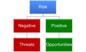 Risk-Management-Threats-and-Opportunities