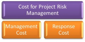 Cost for Project Risk Management