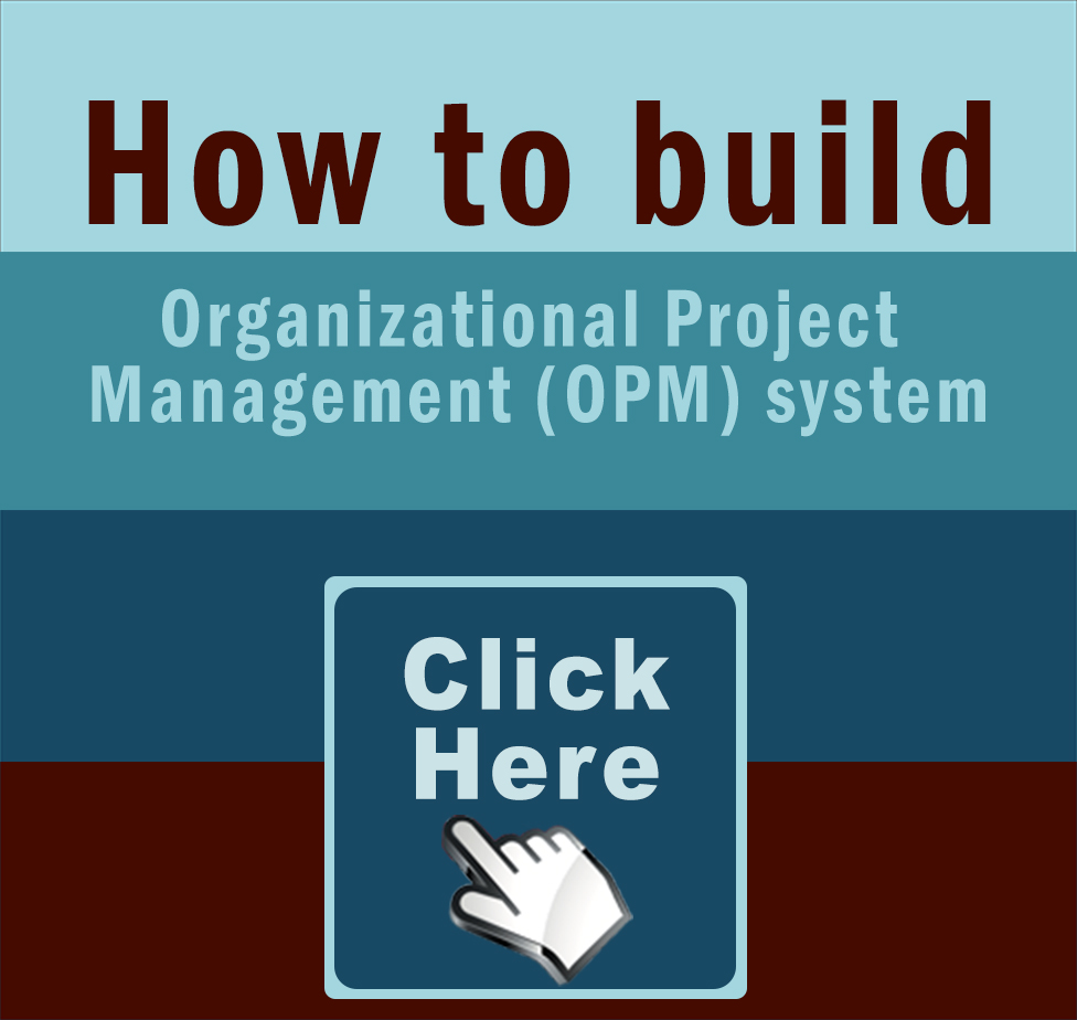 Build and Sustain an Organizational Project Management System