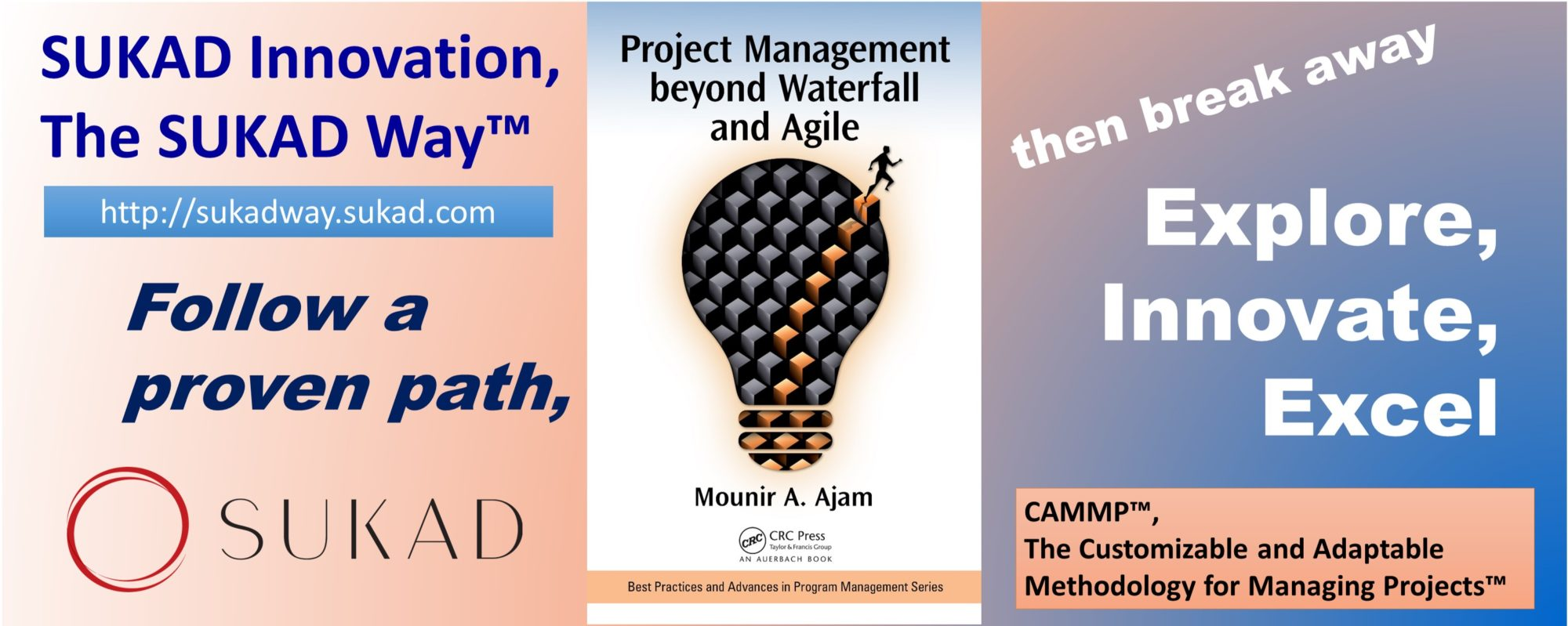 project and innovation management Instill innovation culture in project management practices world-wide.